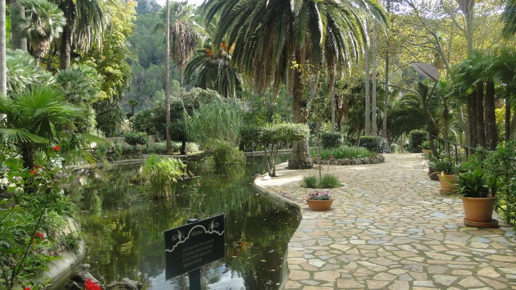 ogrody botaniczne majorka