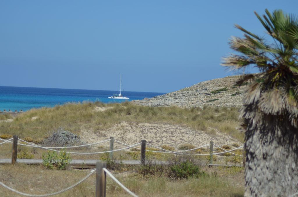 plaża cala mesquida