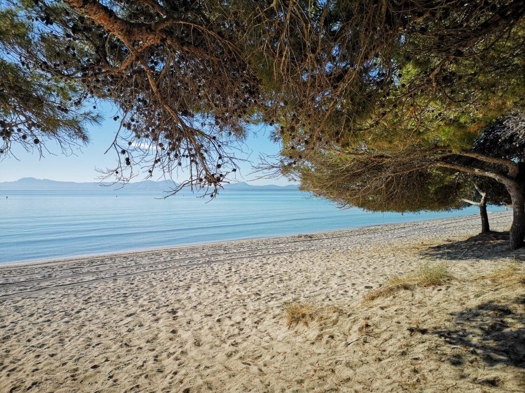 piaszczysta plaża na majorce