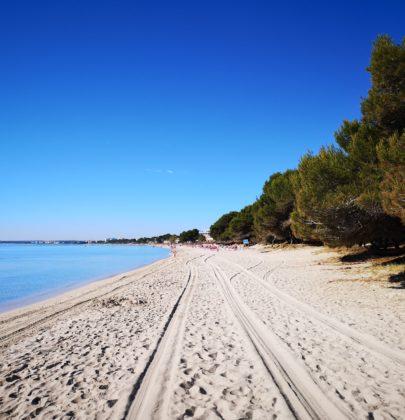 Playa de Muro – najlepsza plaża dla rodzin z dziećmi