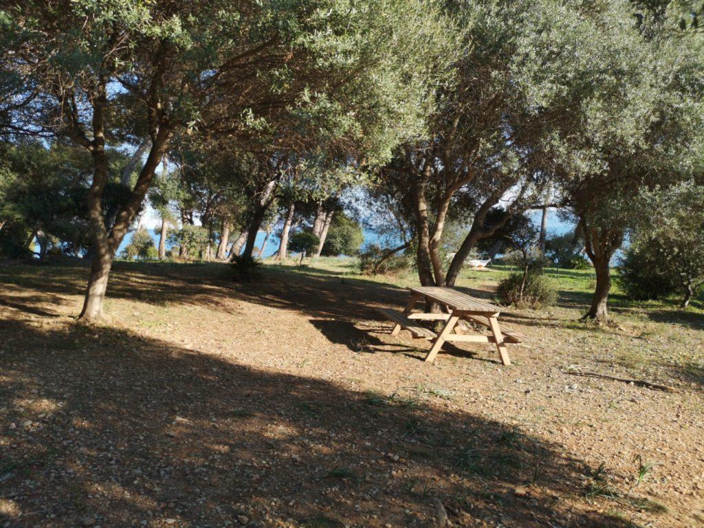 alcanada piknik